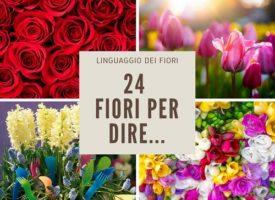 Il linguaggio dei fiori: quali regalare per augurare prosperità